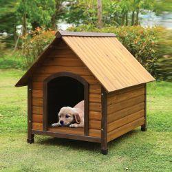 98206  Dog House