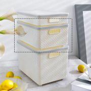 HH-MED-IV  Storage Box