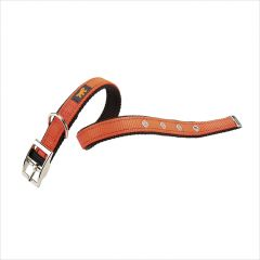 Dual CF15/35-Orange  Nylon Collars