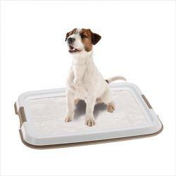 Hygienic Pad Tray-Small  Plastic Tray