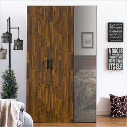 MC-9040  Double Closet w/ Mirror Door