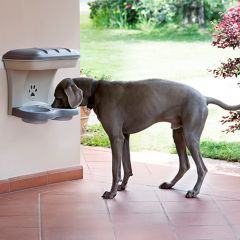 19040  Pet Fountain