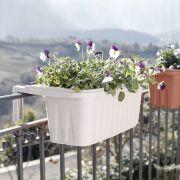 30223  Rondine Balcony Box