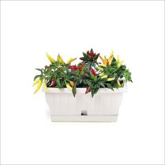 34200  Balcony Flower Box