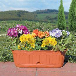 30948  Etika Flower Box