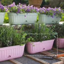 30950  Etika Flower Box