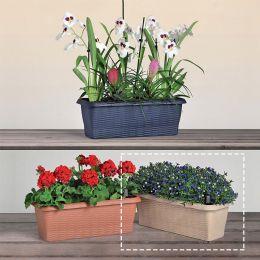 30645  Flower Box Paglia