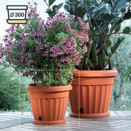 30030  Iris Pot