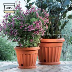 30035  Iris Pot