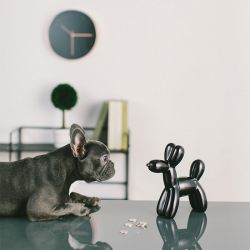 Crazy Dog-Black Coin Bank  (Big Size)