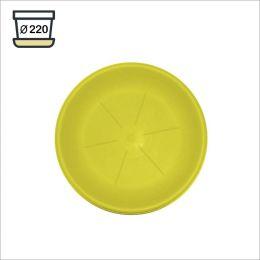 24103 Round Saucers (6개)